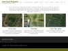 New Farm Fisheries - Carp & Cat Fisheries - Fishing Maidenhead, Berkshire