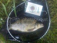 12arches11-07-20114.jpg
