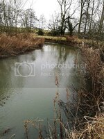 River%20Windrush%2016-02-2017_zpsz3lhkurl.jpg