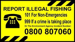 4.-Report-Illegal-Fishing-Wx1200px-300x171.jpg