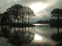 Lake-Early-Morning800x600.jpg