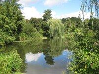 Riverside-Swimjpg-zps614a61d4.jpg
