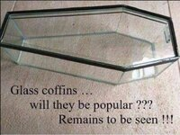 glasscoffin.jpg
