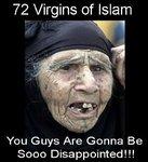 72_virgins_of_islam.jpg