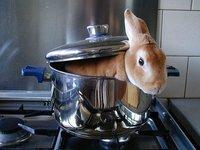 bunny boiler.jpg