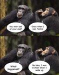 apes dad.jpg