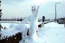 snow perv.jpg