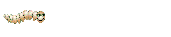 The Maggotdrowning Store